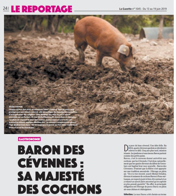 Image Gazette Juin 2019